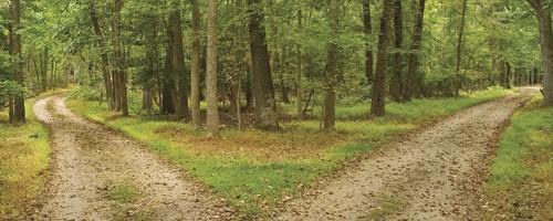 two roads choice